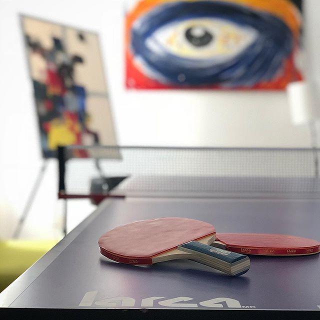 Raquetas y Pelotas para Ping Pong